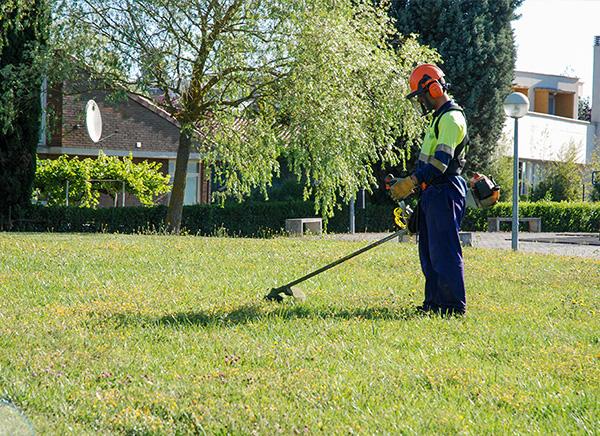 Rea de jardiner a y horticultura indesa 2010 for Mantenimiento de jardines